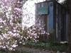 Spring-Summer 2013 036